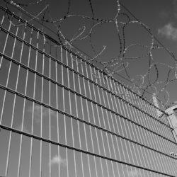 immigration detention center freedom federal bonding agency