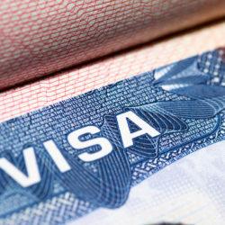 temporary visitor visa freedom federal bonding agency