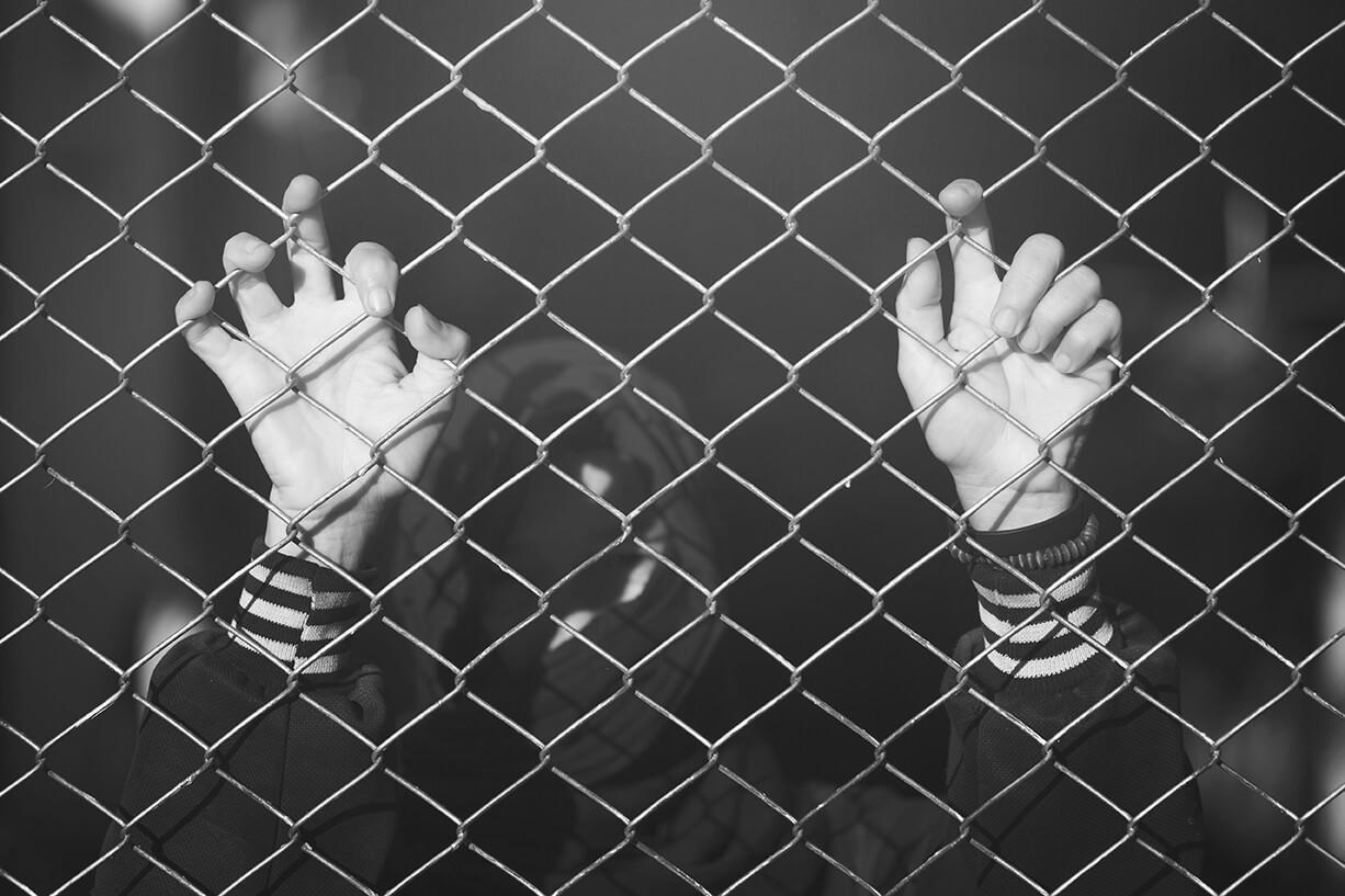 List In Deportations Freedom Bonding