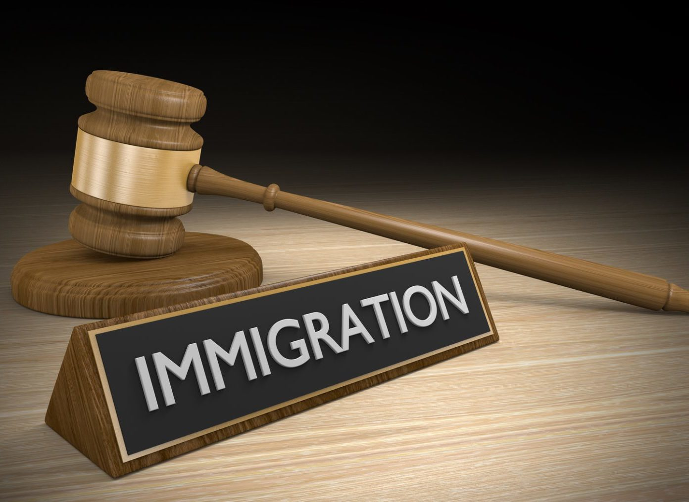Detained Undocumented Immigrants